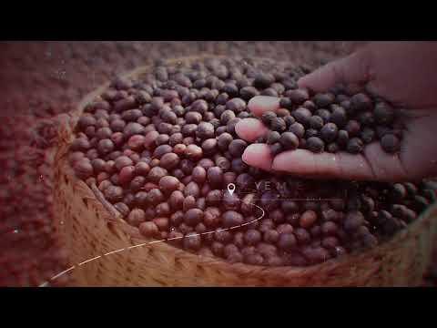Yemen Coffee| Buy Yemen Coffee Online|Haraz Coffee