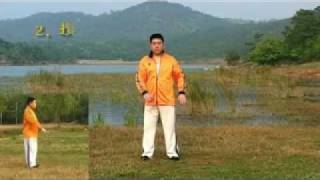 Tai Chi Chuan 28 Forms by Master James Fu(Fu Qing Quan) - Authentic Yang Style