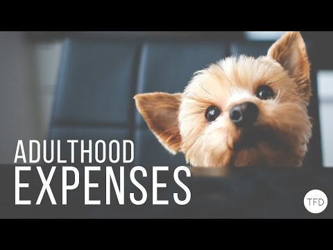 The Unexpected Expenses of Adulthood