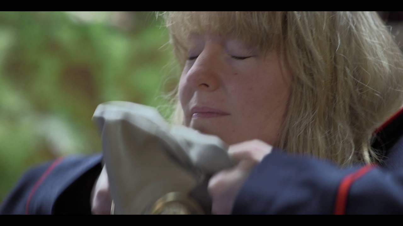 Goodbye Baby Lady (short film)