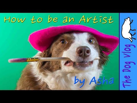 How to be an Artist  by Asha the Border Collie