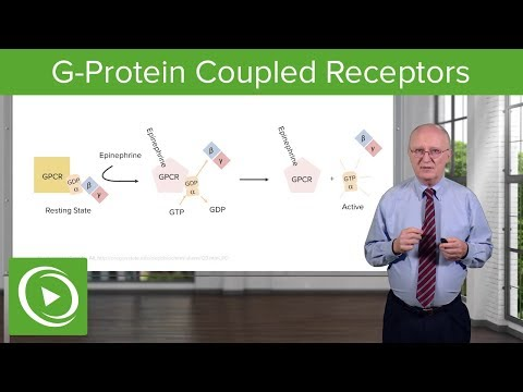 G-Protein Coupled Receptors (GPCRs) – Biochemistry | Lecturio