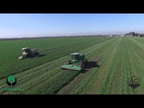 Triple M Custom Farming - Big M & John Deere Swather