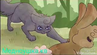 Клип коты воители ( little big)