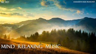Deep Sleep Music 24/7, Relaxing Music, Sleeping Music, Meditation Music, Spa, Study, Sleep Music
