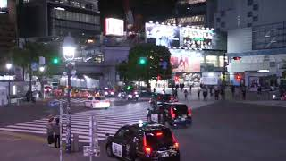 無料テレビで渋谷スクランブル交差点を視聴する