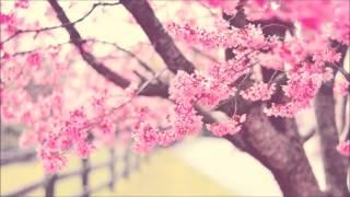 [테마뮤직] 산뜻한 봄노래 모음곡