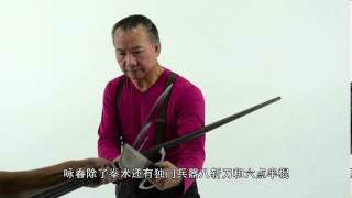 Wan Kam leung Practical Wing Chun Shanghai