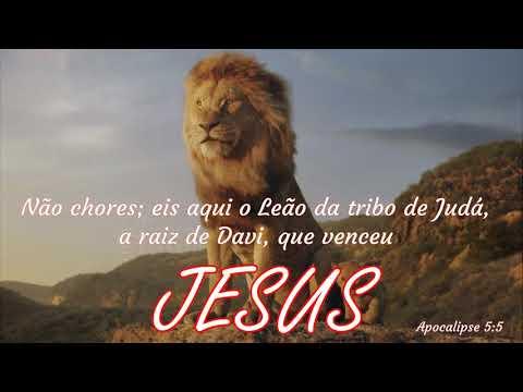 jesus-o-leÃo-da-tribo-de-judÁ-raiz-de-davi-que-venceu