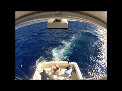 Offshore Fishing Hawaii Big Island
