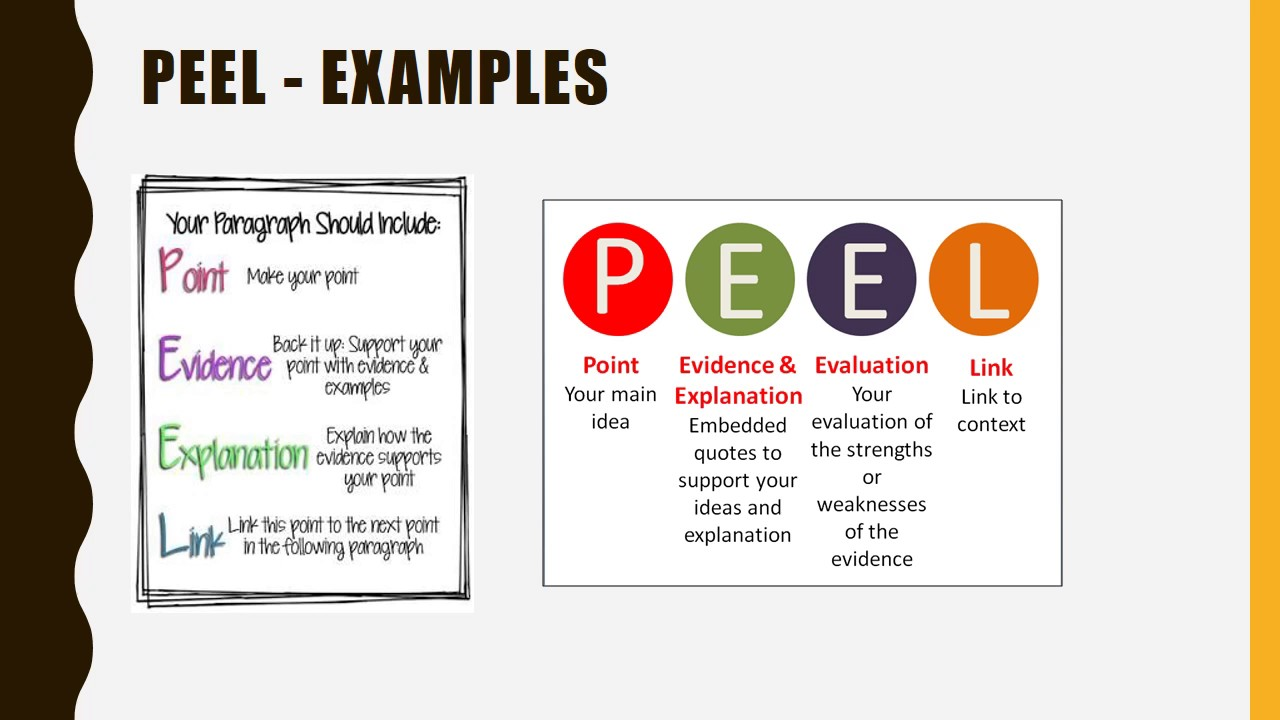 english essay report writing