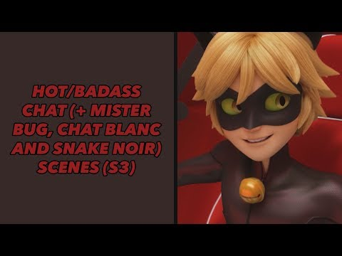 Hot/badass Chat (+ Mister Bug, Chat Blanc And Snake Noir) Scenes (s3) [UPDATED] | Miraculous Ladybug