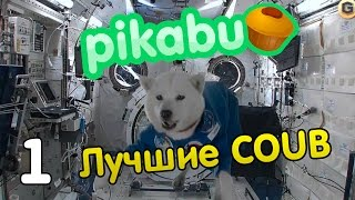 видео Пикабу Украина свежее