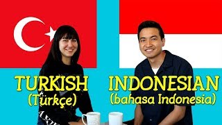Similarities Between Turkish and Indonesian