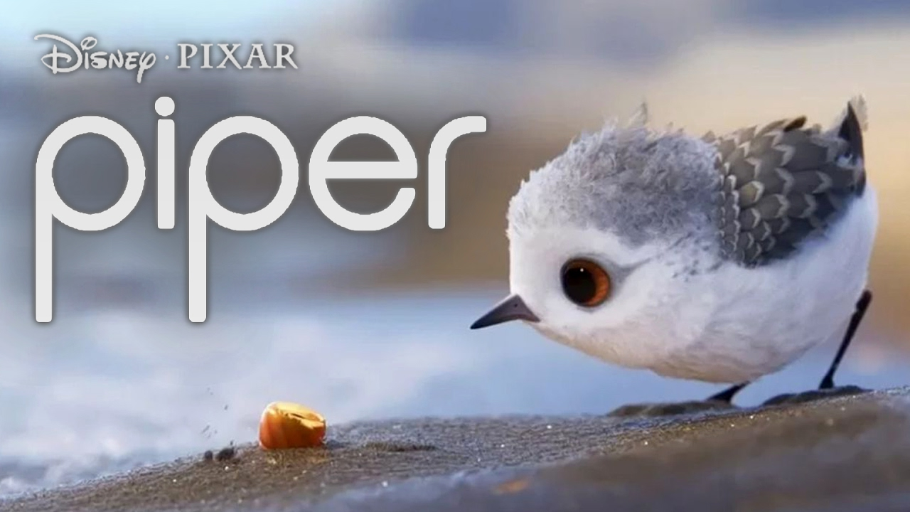 piper short filmdisney pixar - youtube