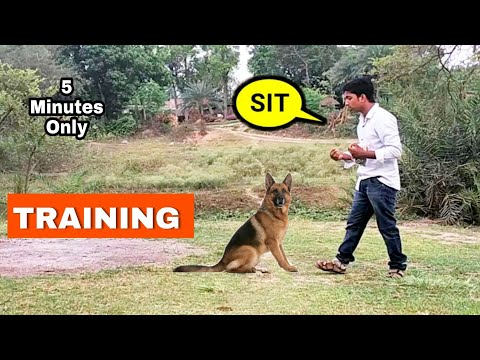 sit-training-in-five-minutes