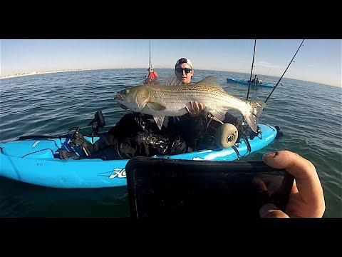 50 lb Kayak Striped Bass?!