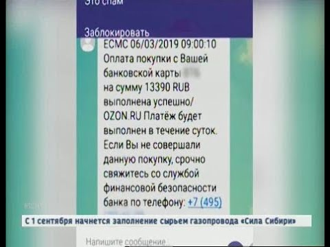 Смотреть Не дал себя обмануть: телефонных мошенников уличил сотрудник уголовного розыска онлайн
