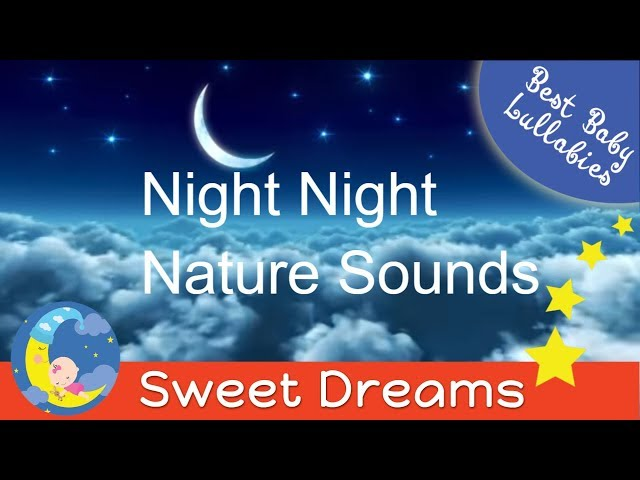 Baby Music Lullaby LULLABIES Lullaby for Babies To Go To Sleep Baby Lullaby Baby Songs Go To Sleep