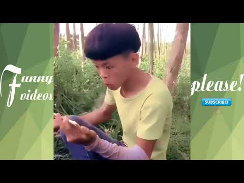 NEW Funny Videos 2017 😂 TOP Funny Chinese