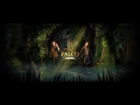 falco video