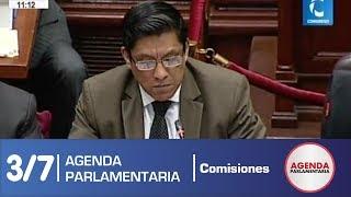 Sesión Comisión de Constitución 3/7 (18/06/19)