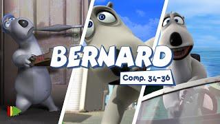 Бернард - 34-36 | Compilation  | Мультфильмы |
