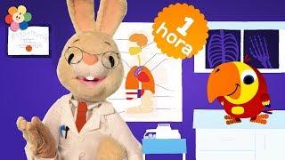 Especial de Harry y Larry | Capitulos Completos de Palabras y Vocabulario para Niños | BabyFirst