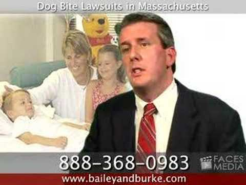 Dog Bite Lawyer / Attorney in Massachusetts