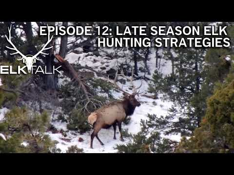 Late Season Elk Hunting Strategies - Elk Talk Podcast (Episode 12)
