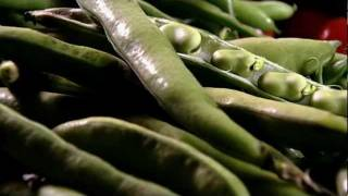 Egyptian Broad Bean Recipes For Picnics - What To Eat Now: Summer