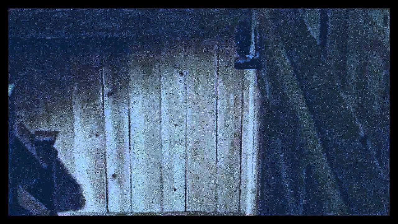 Maggie Bondurant – HD Wallpapers