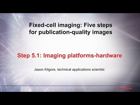 5.1 Imaging platforms-hardware–Fixed cell imaging: 5 steps for publication-quality images