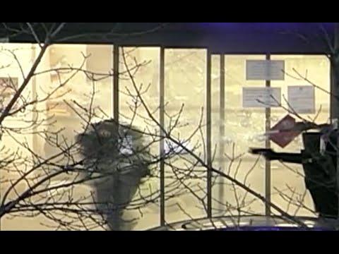 As� irrumpi� la polic�a francesa en supermercado para liberar a rehenes