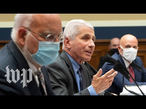 WATCH: Fauci Testifies In Front Of Senate On Coronavirus Response