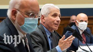 WATCH: Fauci testifies in front of Senate on coronavirus response