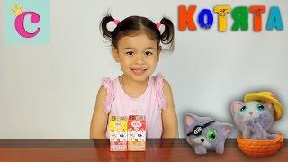 Коробочки с сюрпризами КОТЯТА с мармеладом Box with toys KITTENS unboxing ► София маленькая