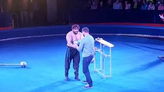 Русский богатырь на арене Цирк Радуга
