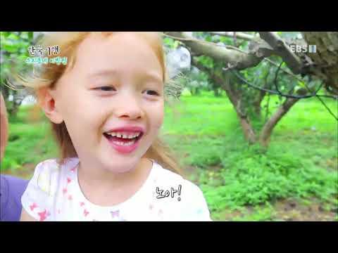 한국기행 - Korea travel_우리동네 이방인 1부 과수원집 맏며느리 애린이_#001