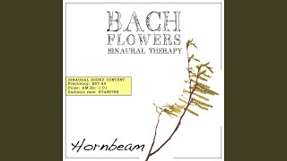 Hornbeam EFT Dose Therapy (Binaural Real Frequency from Bach Flowers)