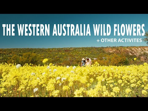 EXPERIENCE | Western Australia Wild Flowers, 4x4 And Sand Boarding