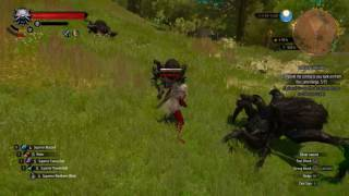 witcher 3 blood and wine giant spiders