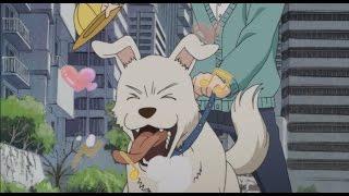 dog meets girl 3-gatsu no Lion