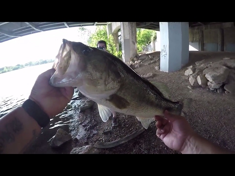 All Things Are BIGGER IN TEXAS I Bass Fishing Downtown Austin