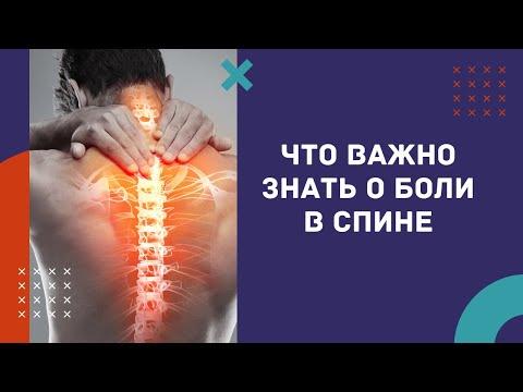 Что важно знать о боли в спине