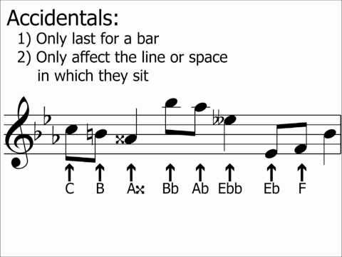 Accidentals & Semitones halfsteps Explained  Music Theory