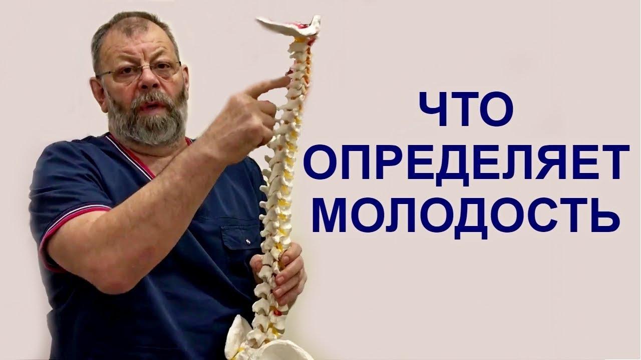 Механизм развития остеохондроза пояснично - крестцового отдела. Чем определяется молодость