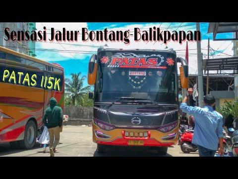 Suossss,,, Sensasi Jalur Bontang-Balikpapan || Trip Bus Samarinda Lestari || Bus Kalimantan