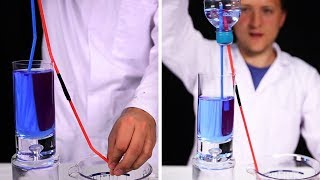 Science Project For School | Quick And Easy Experiments To Do At Home | Fun Things | HooplaKidz Lab