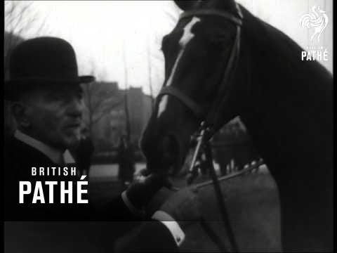 Horse Show (1920-1929)